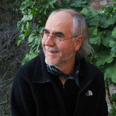 Raimon Piferrer García